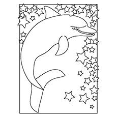 ᐅ 20 besten delfin malvorlagen für ihre kleinen