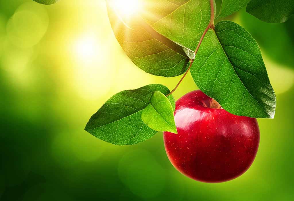 Die Geschichte von Adam und Eva für Kinder