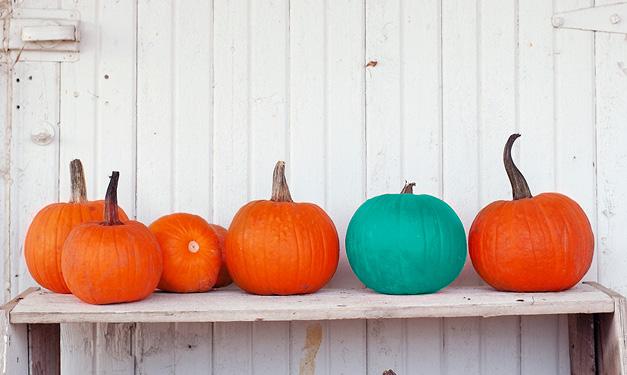 Das Teal Pumpkin Project erhöht das Bewusstsein für Nahrungsmittelallergien an Halloween