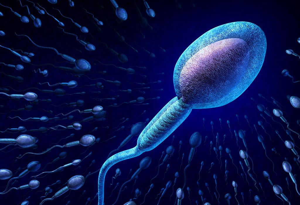 Intrauterine Insemination (IUI) -Verfahren zur Behandlung von Unfruchtbarkeit